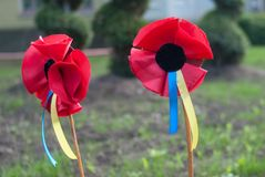 Remembrance Poppies. Red poppies as a symbol of the Victory over Nazism and commemoration of the victims of World War II, celebrated in Ukraine during Day of Stock Photos