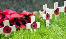 Remembrance Poppies Wreath Stock Image