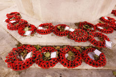 Remembrance poppy Stock Image