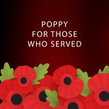 The remembrance poppy Royalty Free Stock Photography