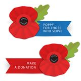 The remembrance poppy Royalty Free Stock Photos