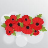 The remembrance poppy - poppy appeal. Decorative frame for Remembrance Day, Memorial Day, Armistice Day vector illustration