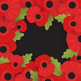 The remembrance poppy - poppy appeal. Stock Photo