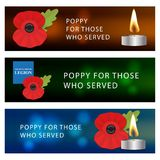 The remembrance poppy Stock Photography