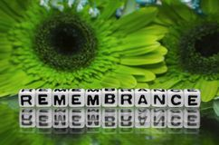 Remembrane text with green flowers Stock Images