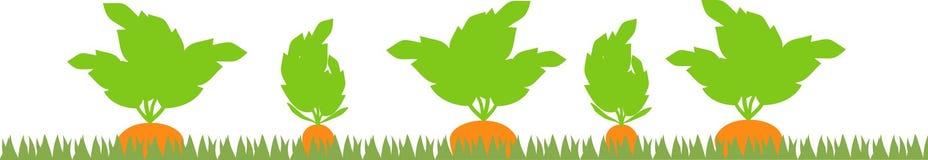Remendo vegetal com silhuetas da cenoura ilustração royalty free