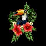 Remendos do bordado do tucano com flores e as folhas tropicais Foto de Stock Royalty Free