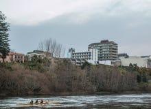 Remeros en el río Fotografía de archivo libre de regalías