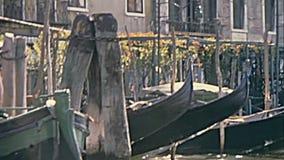Remeros venecianos en Venecia almacen de metraje de vídeo