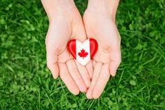 Remet des paumes se tenant autour de l'insigne avec la feuille d'érable canadienne blanche rouge de drapeau sur l'herbe verte Photographie stock libre de droits