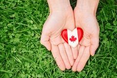 Remet des paumes se tenant autour de l'insigne avec la feuille d'érable canadienne blanche rouge de drapeau, sur le fond de natur Photo stock