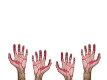 Remet le sang sur le fond blanc Photographie stock libre de droits