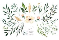 Remettez à aquarelle d'isolement par dessin l'or vert illustration florale avec des feuilles, des branches et des fleurs aquarell Images stock