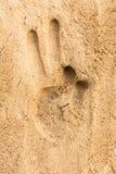 Remettez la copie sur le fond de texture de plage de sable Image libre de droits