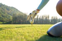 Remettez la femme de golfeur mettant la boule de golf sur la pièce en t avec le club dans le terrain de golf le temps de soirée p Image stock
