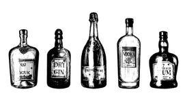 Remettez les bouteilles esquissées de boissons alcoolisées rhum, genièvre, vodka, champagne, cognac Illustrations de vecteur régl illustration de vecteur