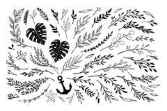 Remettez les lauriers esquissés d'éléments de vintage de vecteur, cadres, feuilles, illustration stock