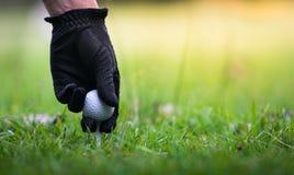Remettez mettre la boule de golf sur la pièce en t dans le club de golf photos stock