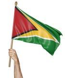 Remettez onduler fièrement le drapeau national de la Guyane Photos libres de droits