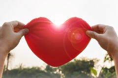 remettez soulèvent doucement le concept rouge de coeur, d'amour et de soin Photo libre de droits