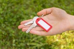 Remettez tenir et passer des clés sur le fond d'herbe Image stock