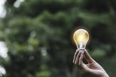 Remettez tenir l'ampoule en nature sur le fond vert photographie stock libre de droits
