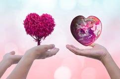 Remettez tenir la terre et les arbres qui coeur rose de forme sur brouillé Images libres de droits