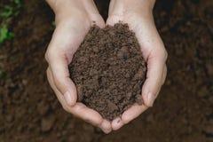 Remettez tenir le sol fertile pour l'usine à l'élevage dans le concept de nature Photo libre de droits