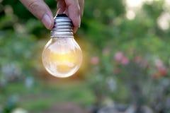 Remettez tenir les ampoules avec rougeoyer sur la terre Idée, creativit Images stock