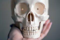 Remettez tenir un crâne sur un fond simple photo libre de droits