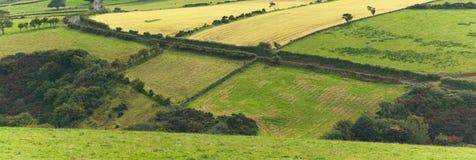 Remiendo de campos verdes Imagenes de archivo