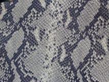 Remiendo de la piel de Python Imagen de archivo