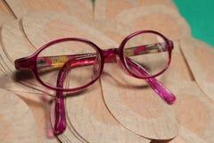 Remiendo ortóptico del ojo para la terapia de la obstrucción con los vidrios de los childImagen de archivo libre de regalías