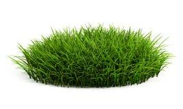 Remiendo redondo de la hierba fresca libre illustration