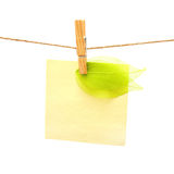 Reminder and green leaf with clothes peg. Series Royalty Free Stock Photo