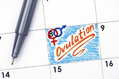 Reminder Ovulation in calendar with orange pen. Close-up royalty free stock image