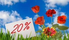 Remise à vendre, remise de 20 pour cent, bel oeillet de fleurs dans le plan rapproché d'herbe Photographie stock