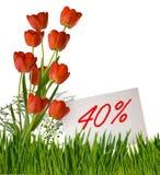Remise à vendre, remise de 40 pour cent, belles tulipes de fleurs dans le plan rapproché d'herbe Photo libre de droits