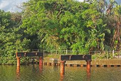 REMNANT OF OLD BRIDGE IN LAGOON WITH SUBTROPICAL VEGETATION. Metal pillars of old bridge in lagoon and railing of concrete embankment against subtropical Stock Images