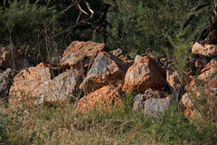 REMNANT OF ROCK WALL ON OLD FARM. Rocks formerly part of a farm wall Stock Image