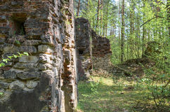 Remnants of old and destroyed buildings in forest. Remnants of old and destroyed gunpowder magazines dated before World War I lying in forest Royalty Free Stock Photography