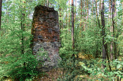 Remnants of old and destroyed buildings in forest. Remnants of old and destroyed gunpowder magazines dated before World War I lying in forest Stock Image