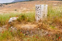 Remnants of an ornately carved column in a field Royalty Free Stock Image