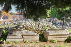 Remnants of stone with Roman writing carved on them in front of rubble and under pine trees in Corinth Greece stock image