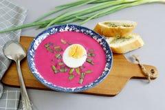 Remolacha fría de la sopa con el pan de cebolla Gray Background Imagen de archivo libre de regalías
