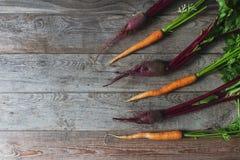 Remolacha y zanahoria orgánicas frescas en el fondo de madera rústico, forma de vida sana, cosecha del otoño, verduras crudas, vi Imagenes de archivo