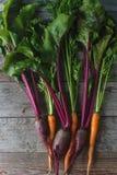 Remolacha y zanahoria orgánicas frescas en el fondo de madera rústico, forma de vida sana, cosecha del otoño, verduras crudas, vi Fotos de archivo libres de regalías