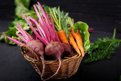 Remolachas y zanahorias jovenes con tops en una cesta Fotos de archivo