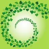 Remolino del verde de los corazones Fotografía de archivo libre de regalías