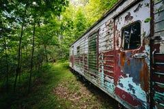 Remolque abandonado en el bosque, en el Shenandoah Valley rural, Fotografía de archivo libre de regalías